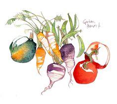 katie eberts: Garden Harvest