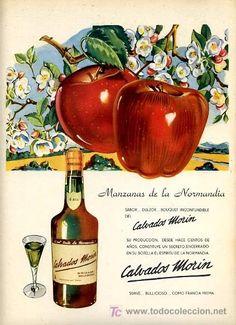 CARTEL PUBLICIDAD CALVADOS MORIN , LICOR DE MANZANA DE NORMANDIA , FRANCIA MZ 15 (Coleccionismo - Carteles Pequeño Formato)