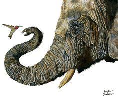 Elephant and Hummingbird illustration art by Jennifer Lambein via www.Facebook.com/JenniferLambeinStudioPetite
