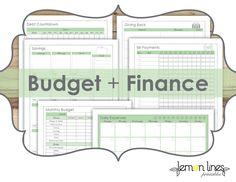 Budget & Finance Printable Pack - INSTANT DOWNLOAD by LemonLinesPrintables on Etsy https://www.etsy.com/listing/104894114/budget-finance-printable-pack-instant