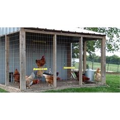 The Chicken Swing from My Pet Chicken Chicken Coop On Wheels, Chicken Fence, Chicken Swing, Cheap Chicken Coops, My Pet Chicken, Chicken Coop Signs, Portable Chicken Coop, Backyard Chicken Coops, Building A Chicken Coop