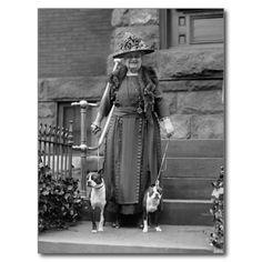 boston terrier fashion cutting edge elegance - Google Search