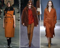 Spicy Mustard comes as one of the most vibrant fall/ winter 2016 color trends…