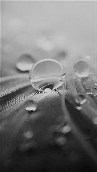 Abstract Macro Droplet Water Splash iPhone 5s Wallpaper Download   iPhone Wallpapers, iPad wallpapers One-stop Download