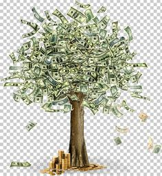 Gold Money Wallpaper, Black Phone Wallpaper, Tree Wallpaper, Money Images, Money Cant Buy Happiness, Money Trees, Pretty Wallpapers, Tree Art, Clipart