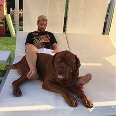 Leo Messi and Hulk Neymar, Cr7 Vs Messi, Messi Fans, Messi 10, Fc Barcelona, Lionel Messi Barcelona, French Mastiff Puppies, Mastiff Dogs, Champions League