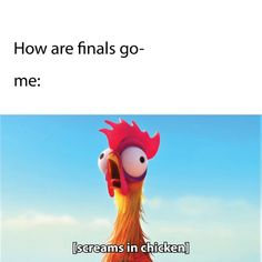 35 New Ideas Funny School Memes College Life Finals Week Finals Week Humor, Finals Week College, College Memes, Funny School Memes, School Quotes, Funny Memes, Hilarious, College Life, Funny Quotes