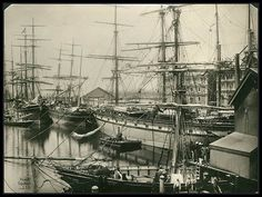 """SLSA B 12 Dock - south side, at Port Adelaide. In the foreground is the """"Northern Belle"""". Vessel with painted ports is the """"Myrtle Holme"""" and ahead of her is the """"Kebroyd"""". 1886  Visit www.catalog.slsa.sa.gov.au/screens/opacmenu.html to view more photos of South Australia."""