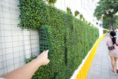 Hmmm ok where can I find this?? Faux greenery wall for a DIY backdrop behind bridal table or stage/dance floor.