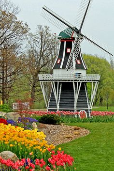 Windmill Island, Tulip Time Festival, Holland, Michigan.  Photo: Beth J18, via Flickr