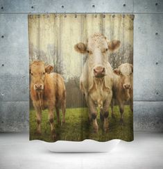 Hey, I found this really awesome Etsy listing at https://www.etsy.com/listing/244040898/cow-shower-curtain-vintage-inspired-farm