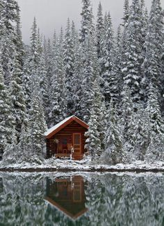 rustic log cabin in the snow