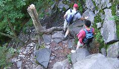 Devil's Path, Catskills State Park, NY - dog friendly hiking