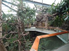 I love this zoo-especially the lied jungle!