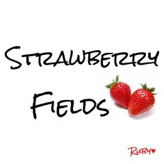 * Strawberry Farm, Strawberry Patch, Strawberry Fields Forever, Farm Cottage, Country Farm, Berries, Fruit, Sweet, Food