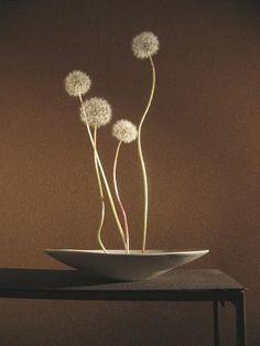 "nostalgia-gallery: "" ""Ikebana"" with Dandelion "" Ikebana Flower Arrangement, Ikebana Arrangements, Floral Arrangements, Art Floral Japonais, Art Japonais, Wabi Sabi, Arreglos Ikebana, Japanese Flowers, Japanese Art"