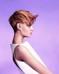 Immagine di http://usa.publiboda.com/cm/images/hairstyles_by_Salon/vidal_sasson/14142.jpg.
