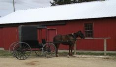 Amish Tours in Lanesboro, MN Car Travel, Travel Info, Clifton Park, Belly Dancing Classes, Horse And Buggy, Roadside Attractions, Worldwide Travel, California Coast, Cleveland Ohio