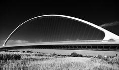 Santiago Calatrava Bridge