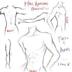 Bored college girls study male anatomy