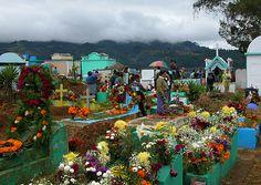 Flowers on graves