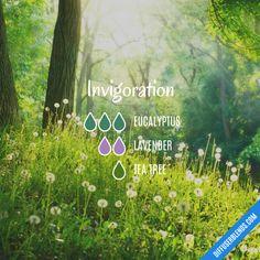 Invigoration - Essential Oil Diffuser Blend