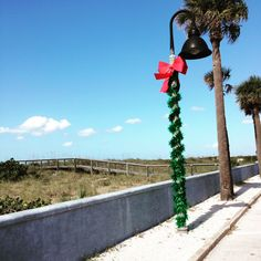 Christmas in Florida!