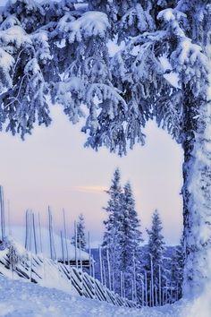 Snow covered snow-scape in Norwegian Winter. I Love Snow, I Love Winter, Winter White, Photo Bleu, Winter Songs, Winter Magic, Winter Scenery, Snow Scenes, Foto Art