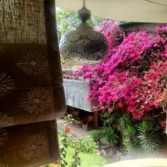 Just another afternoon in the offices - our ecru printed curtains, lamps, and the beautiful bougainvillea.  #ecru #office #jaipur #india #fabric #blockprint #lantern #spring #design #home #homeware