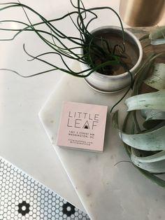 Shop Tour: Little Leaf