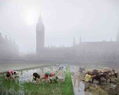 Parliament Square rice paddies - A Museum Of London exhibit called London Futures: Postcards From The Future, gives the vision of an apocalyptic London post climate change impact by artists Robert Graves and Didier Madoc-Jones.