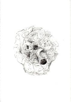 240 Seed Bank, Skull, Tattoos, Drawings, Tatuajes, Tattoo, Sketches, Drawing, Portrait