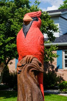 Cardinal tree carving outside the house of Cardinal Bus owners in Middlebury - Indiana