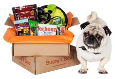 New Age Mama: Bugsy's Box - A Dog Subscription Box - Review, #Discount Code & #Giveaway @Bugsysbox #subscriptionboxes