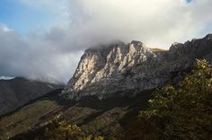 Riqualificazione naturalistica del Monte Bove Sud, si procede