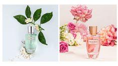 Fotografías publicitarias para perfumes Pdh realizadas por Kinoki Studio Cinemagraph, Glass Vase, Banner, Skin Care, Ideas, Creativity, Pictures, Banner Stands, Banners