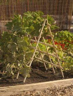 How-To-Build-A-Vertical-Vegetable-Garden