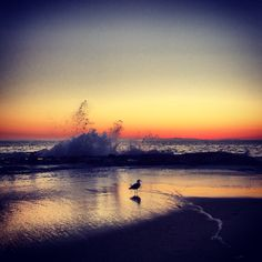 Laguna Beach, CA sunset