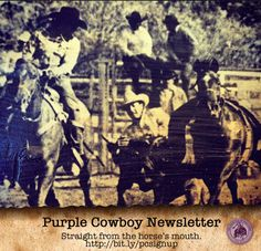 Sit back and enjoy the ride, we'll keep you in the loop! Sign up for our newsletter: Sit Back, This Is Us, Horses, Sign, Purple, Signs, Horse, Board, Viola