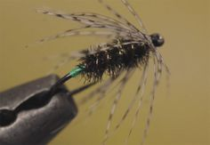 Video: How to Tie the Peacock and Partridge Wet Fly - Orvis News