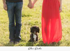 Amanda and Nick #OrangeCountywedding #ocweddingphotographers #ocweddingphotographer #laweddingphotographers #top10weddingphotographerslosangeles #bestofweddingphotography #bestweddingphotographerslosangeles #top10ocweddingphotographers #orangecountyweddingphotographers #orangecountyweddingphotographer #orangecountyphotographer #weddingguidephotographer #bestlosangelesweddingphotography #best10weddingphotographers #losangelesbestofweddings #bestofpalmspringsweddingvendors…