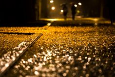 Walking back home in autumn rain by Masa_N. The wet road was partially filled with fallen gingko leaves which were illuminated by street lights in the evening. Shot at Hikarigaoka Park Nerima Tokyo. Reflection And Refraction, Refraction Of Light, Autumn Rain, Autumn Leaves, Rainy Night, Circulation Sanguine, Pavement, Bokeh, Back Home