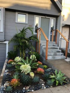 Succulent Landscaping, Landscaping With Rocks, Landscaping Design, Front Yard Landscaping, Succulents Garden, Dessert Landscaping, Outdoor Landscaping, Yard Design, Flower Boxes