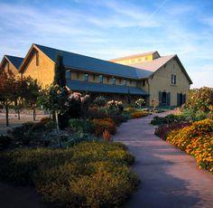 Madrone Vineyard Estates in Glen Ellen, CA
