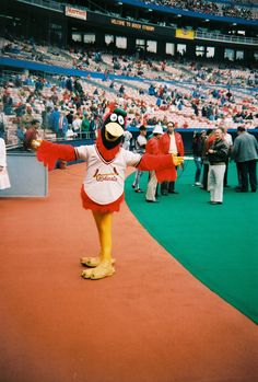 Fredbird in 1984