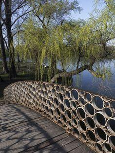 park, lake, trees, color, sky, reflections, water, willows, bridge, circles, shadows
