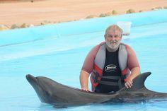 A nice dolphin