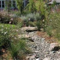 Channeling Mother Nature: Build a Dry Creek Bed to Divert Rainwater Where You Want It