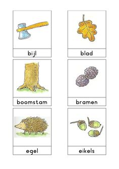 Woordkaarten Bas 'Het bos' 1 Learn Dutch, Dutch Language, Forest Theme, Autumn Forest, Fall Harvest, Primary School, Preschool, Teaching, Pets