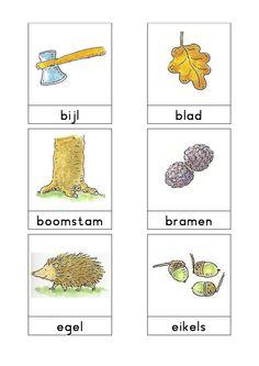 Woordkaarten Bas 'Het bos' 1